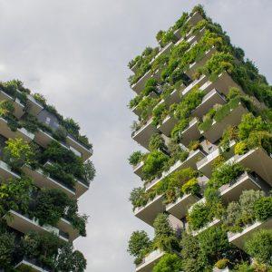 Nachhaltigkeit: Wie Städte dem Klimawandel begegnen