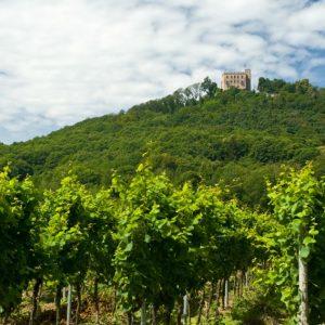 Hambacher Schloss bei Neustadt an der Weinstraße (Quelle: Rheinland-Pfalz Tourismus GmbH/Dominik Ketz)