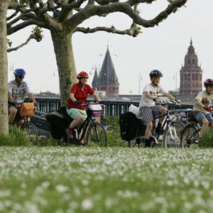 Radfahren am Rheinufer in Mainz (Quelle: Landeshauptstadt Mainz)